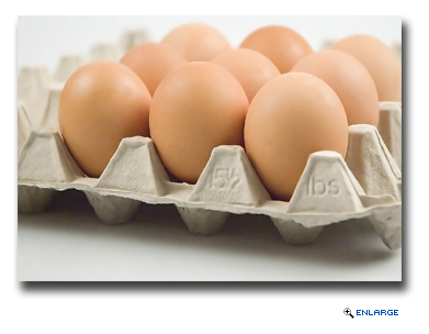 Carnival Corporation Announces Timeline for Sourcing 100% Cage-Free Eggs