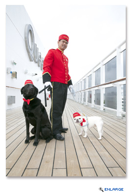 Queen Mary 2 gave a royal welcome to Boston's top Instagram dogs, Nacho (@NachoDogg) and Bear (@KnoxandBear)