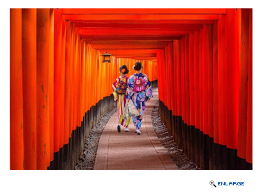 Princess Cruises Unveils 2018 Japan Cruise and Cruisetour Program