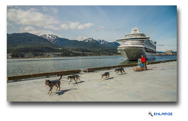 A dog sled team led by Maliko Ubl welcomed Ruby Princess to the port of Juneau during her maiden voyage in Southeast Alaska.