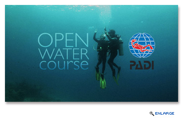 Dive Into Adventure With PADI Open Water Diver Course On Royal Caribbean